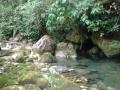 resurgencia_aguasverdes