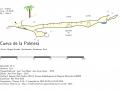palmera-perfil2019