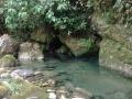 resurgencia_aguasverdes__